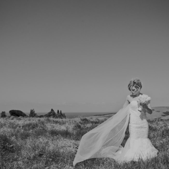 Wedding Faves - Click To View Gallery